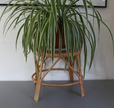 Piedestal Höjd 23 cm
